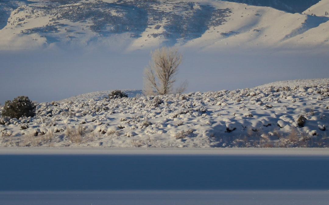 Deep Freeze at Bridgeport Reservoir, CA